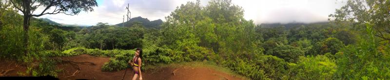 Maunawili overlook