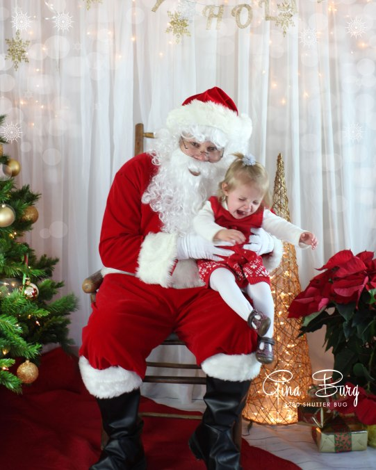 Gina Burg | Santa Sessions | Photographer