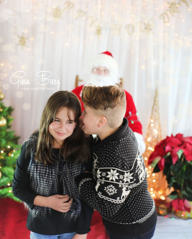 Gina Burg | Santa Sessions | Photographer