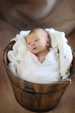 © Newborn Photographer | Gina Burg