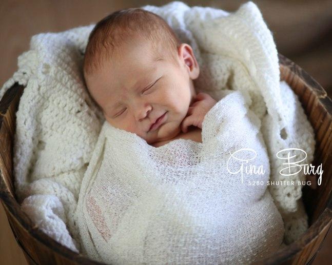 © Newborn Photographer | Gina Burg